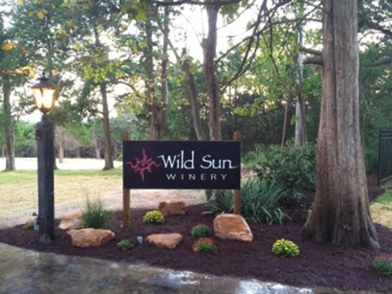 wild-sun